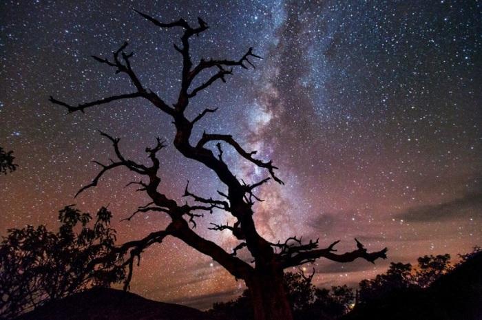 Наблюдение за звездным небом, станет еще одним потрясающим воспоминанием об этом месте.