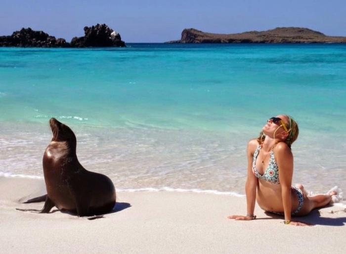 На Галапагосских островах обитают сотни видов животных и растений, которые не встречаются больше нигде на Земле.