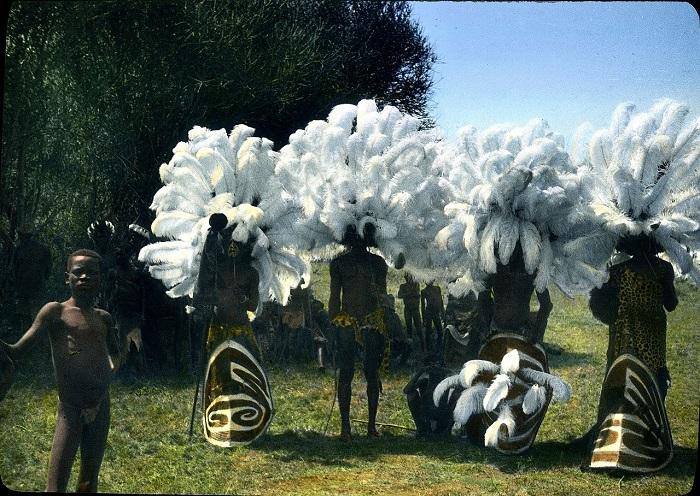 Артисты в страусиных перьях на большом танцевальном фестивале.