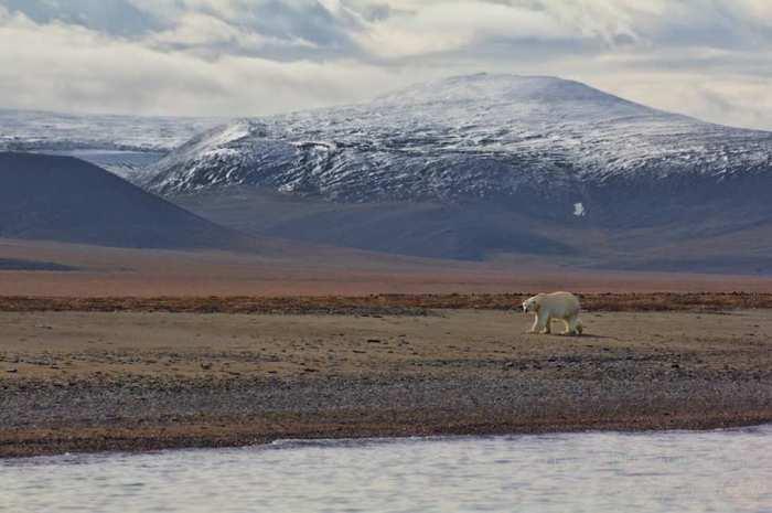 Российский остров в Северном Ледовитом океане между Восточно-Сибирским и Чукотским морями.