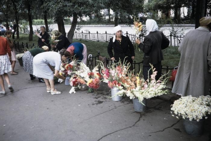 Цветочный бизнес в СССР. Автор фотографии: Harrison Foreman.