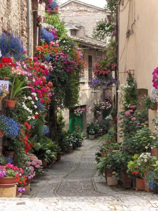 Сказочно-прекрасные цветущие улицы романтического города Спелло (Италия).