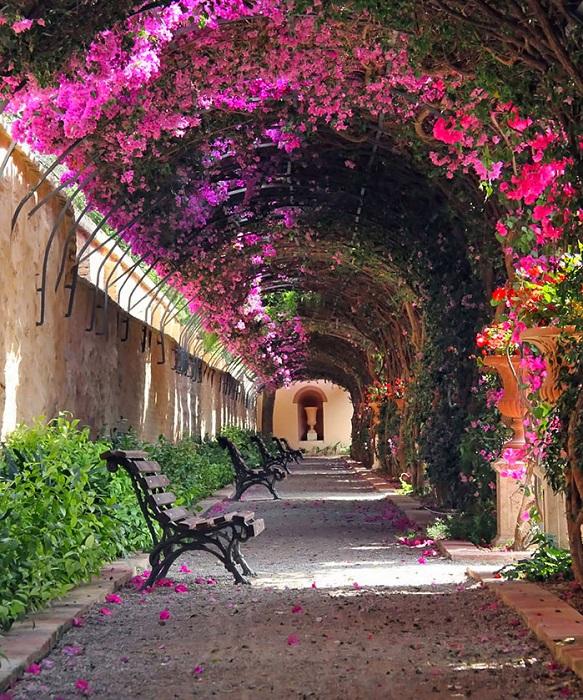 Одна из красивейших достопримечательностей Валенсии (Испания)- сад Монфорте.