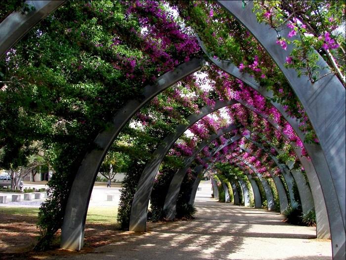 Увитая бугенвиллиями искусственная «Большая беседка» в парке Саут Бэнк в Брисбене (Австралия).