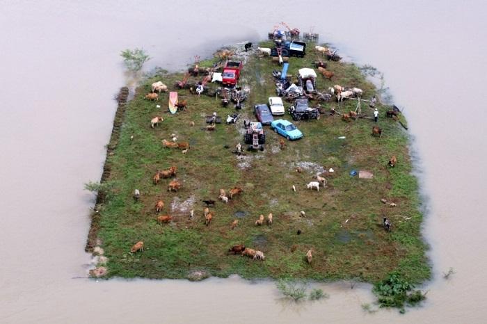 Островок, заполненный спасающимися от наводнения в Малайзии.