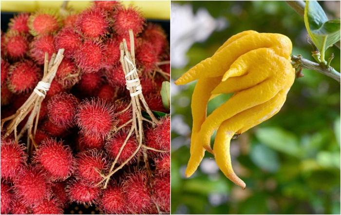 Экзотические фрукты, которые обязательно стоит попробовать.
