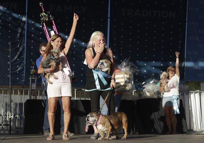 Тройка победителей, занявших призовые места на конкурсе, который проходил в городе Петалум.