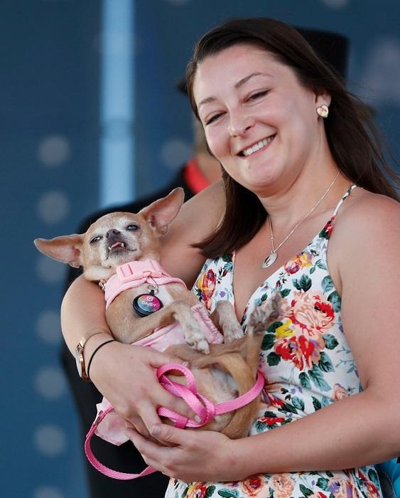 В 2018 году конкурс World's Ugliest Dog отметил свое 30-летие.
