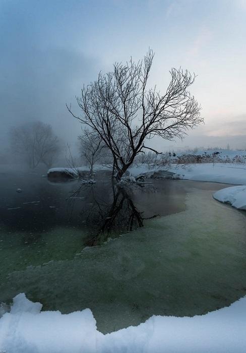 Очарование зимнего пейзажа.