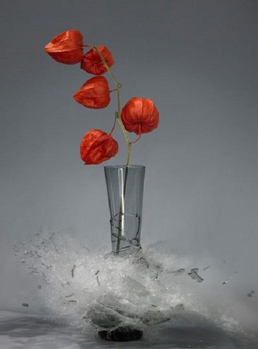 «Недолговечная» цветочная ваза.