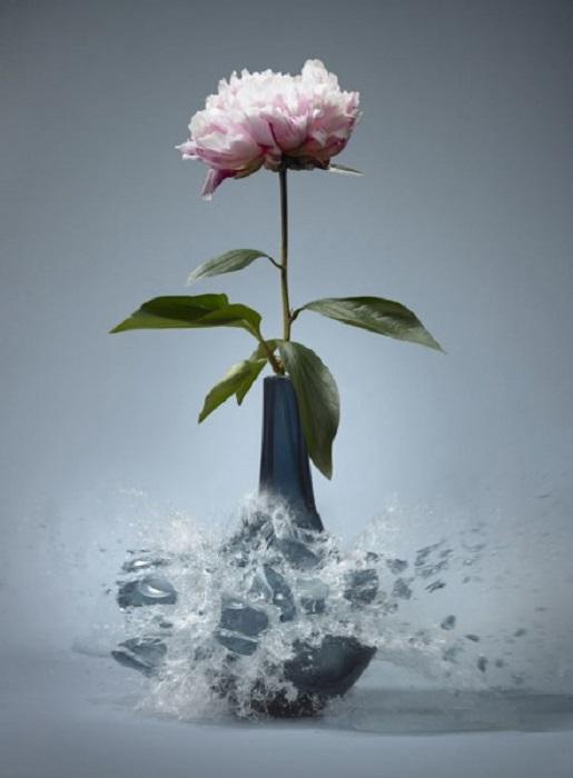 Мгновение взаимодействия стали и вазы.