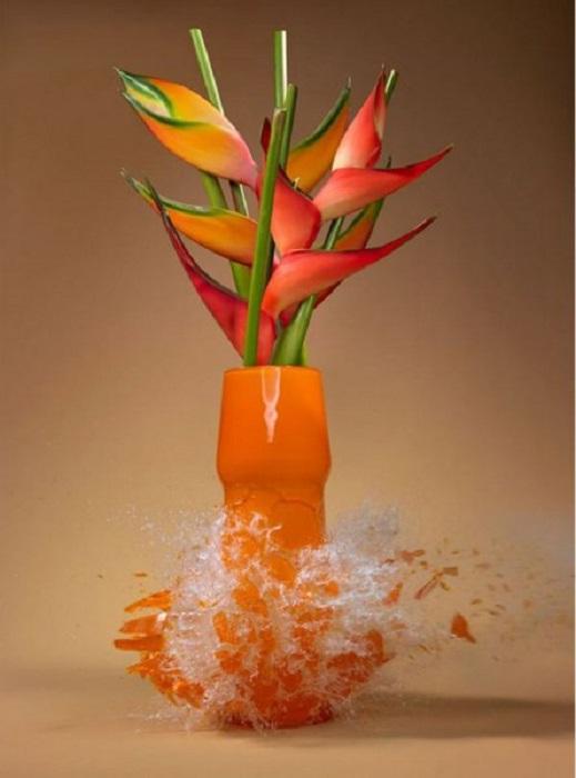 Потрясающий снимок с разлетающимися вдребезги живописными вазами с цветами.