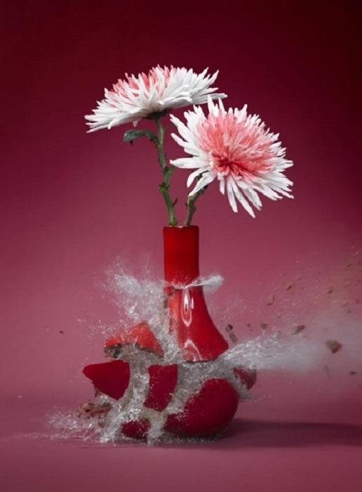 Крушение цветочной вазы.