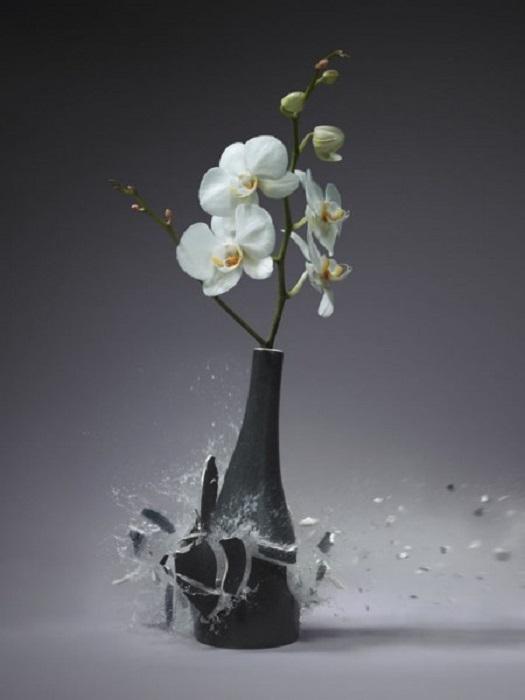 Взрыв глиняной вазы.