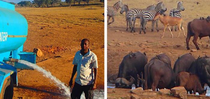 Ежедневно кенийский фермер Патрик Килонзо Малуа доставляет воду, чтобы напоить обитателей Национального парка.