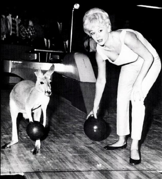 Бельгийская актриса и модель Моник Ван Ворен в боулинге с кенгуру.