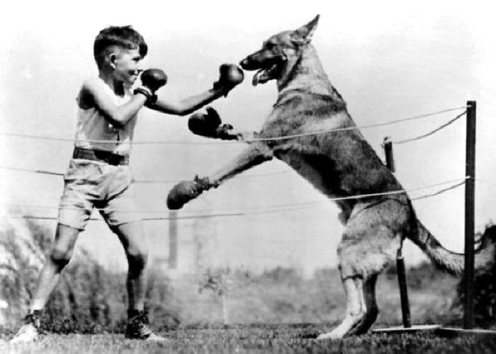 Поединок мальчишки с 10-месячным псом.