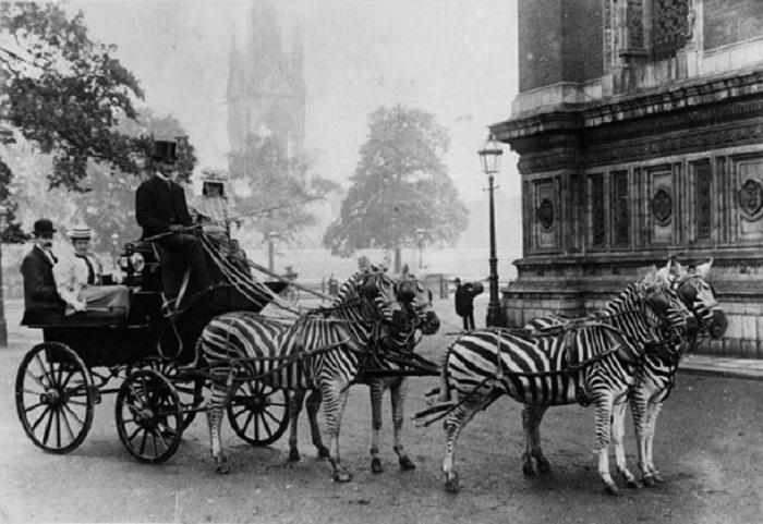 Необычное транспортное средство прошлого века.