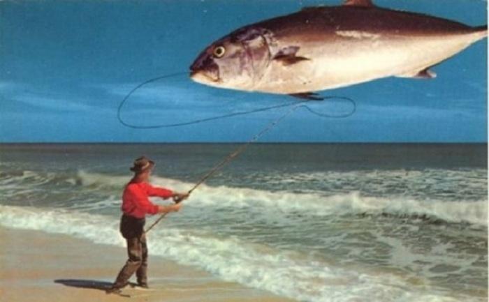 Вот это улов, за который будет не стыдно даже рыбаку-профессионалу!