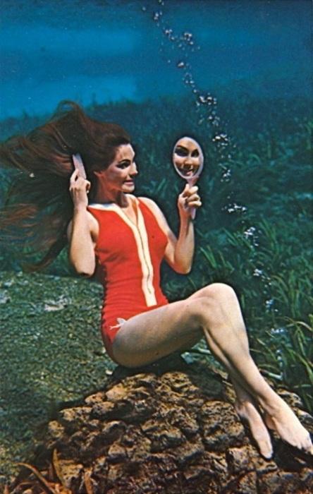 Реклама водного шоу русалок, проходящего в парке развлечений «Weeki Wachee Springs» во Флориде.