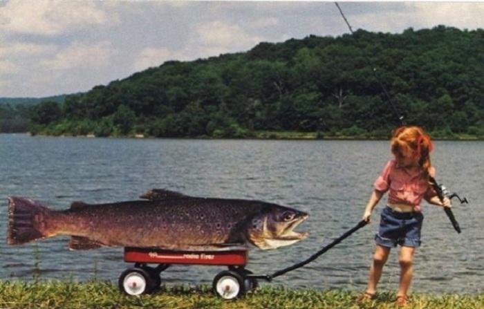 Странные открытки на тему рыбалки, как и охоты, одни из самых многочисленных и способны удивить любого.