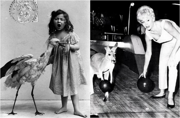 Смешные ретро-фотографии с животными.