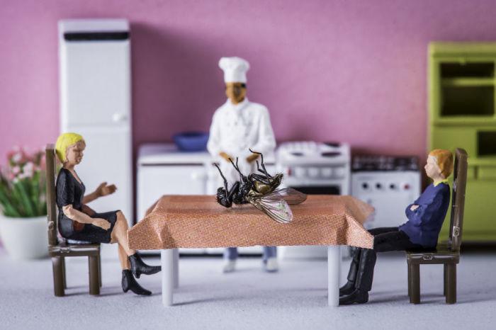 Необычайное блюдо на столе, поданное шеф-поваром.