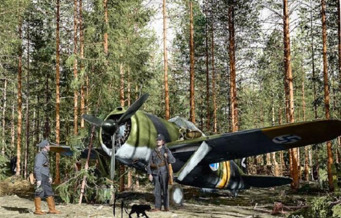 Финский Брюстер Буффало 239 истребитель на аэродроме. 24 июня 1941 года.