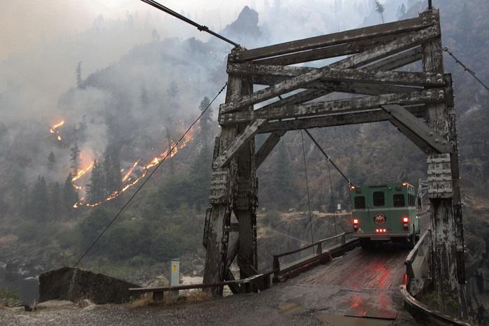Сгорело около 316 квадратных километров леса.