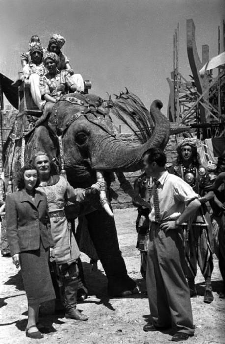 Фильм-сказка Александра Птушко стал лидером проката в 1953 году, а американским зрителям стал известен как «Волшебное путешествие Синдбада».