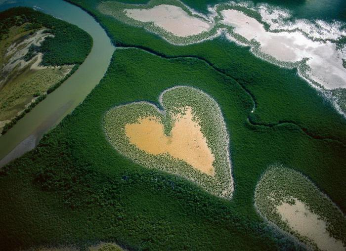 Вид сверху на главную достопримечательность Новой Каледонии - «сердце Во» - мангровая роща, похожая на сердце.