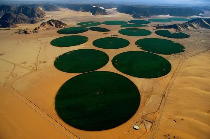 Пустынное плато, на котором размещены ирригационные круги или «карусели орошения».