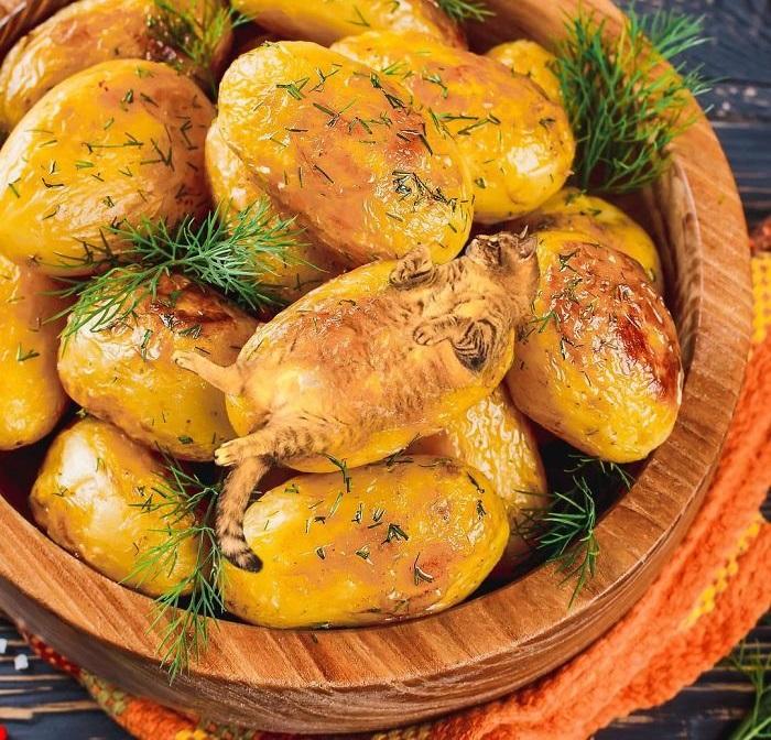 Отдых на ароматном картофеле.