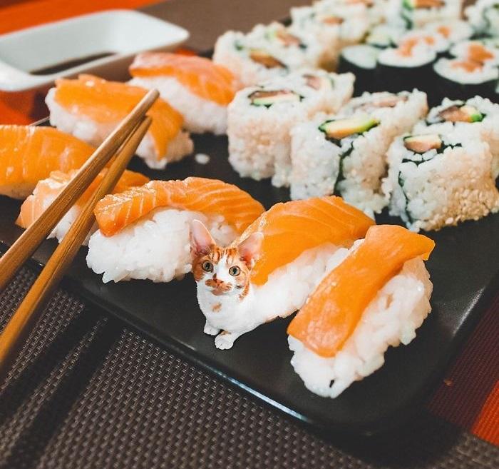 Вкусные эмоции азиатских кулинарных традиций.