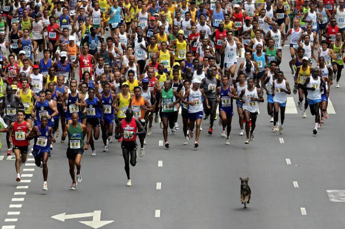 В марафоне участвовало огромное количество спортсменов и не только… Автор фотографии: Mauricio Lima.
