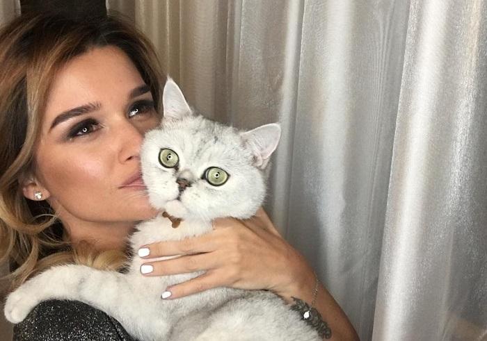 Российская телеведущая со своим зеленоглазым любимцем - котом Шанти породы скоттиш-страйт.