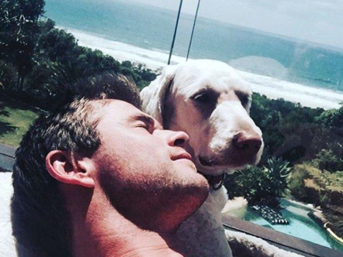 Дора-путешественница, которую актер еще щенком взял из приюта для собак, охраняет сон хозяина.