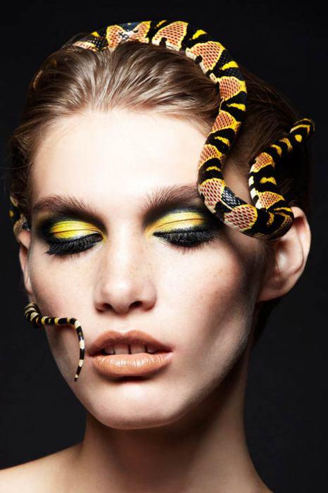Змея-символ силы и хитрости.