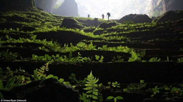 Фотографії найбільшої печери світу.