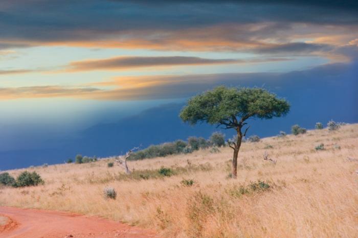 Побережье в лучах заката, Сомали.