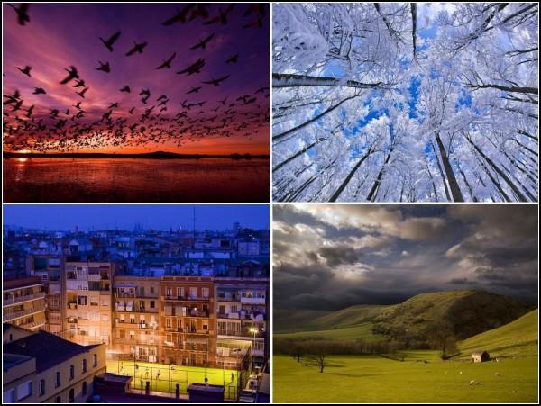 Лучшие фотографии за 24-30 января