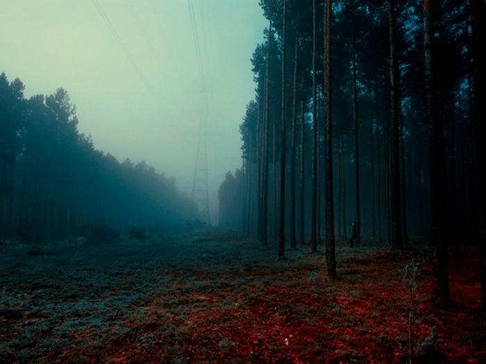 Нереальные пейзажи. Фотоманипуляции Барбары Флорчик (Kokoszkaa)