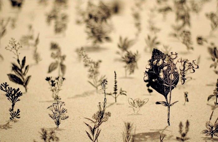 Blackfield, инсталляция из металлических растений на поле из песка