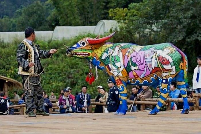 Bull Painting Festival, ��������� ������������ ��������� ����-���� �� �����