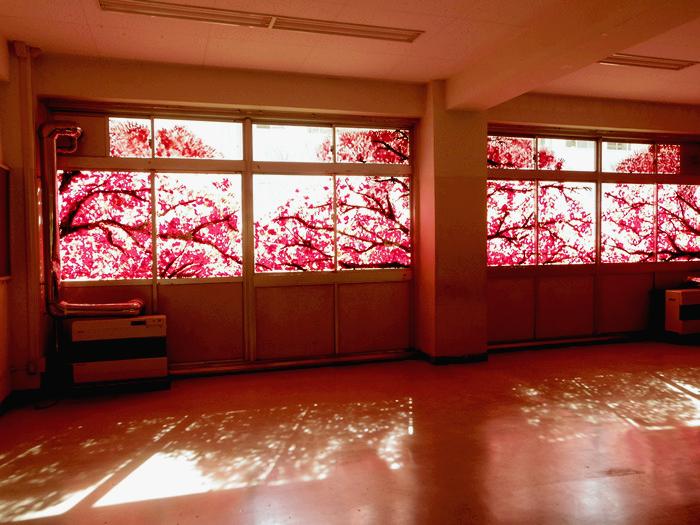 Арт-проект Okurie. Фрески на зданиях, готовых под снос