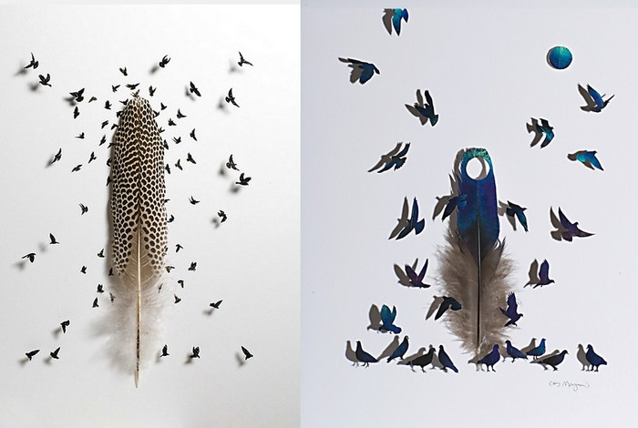 Стая птиц и груда перьев.  Арт-проект Криса Мейнарда (Chris Maynard)