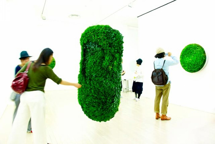 Collapsible Leaves: скульптуры из сложенных листьев от Azuma Makoto