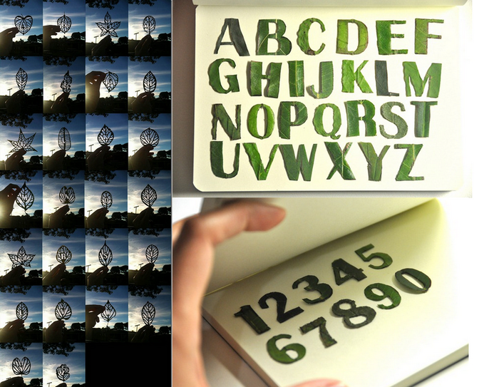 Цифры и буквы, вырезанные в листьях, арт-проект Мэй Линн Чан (Mei Linn Chan)