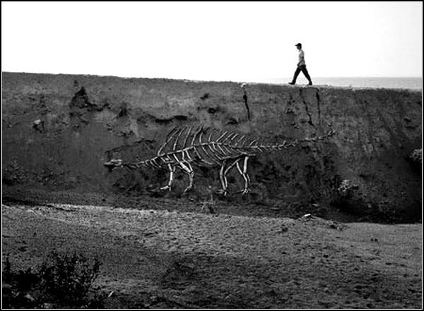 Инсталляция Driftwood Dinosaur. Деревянные артефакты