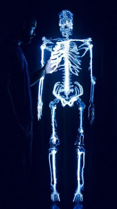 Светящаяся неоном скульптура-скелет Embodiment